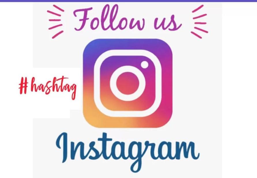 Sugestão de Perfis Para Seguir no Instagram
