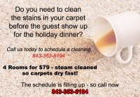 Carpet Stains Myrtle Beach