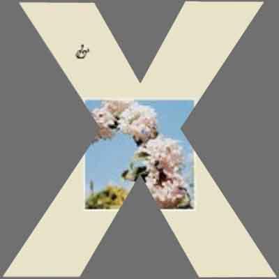 CoverX1937