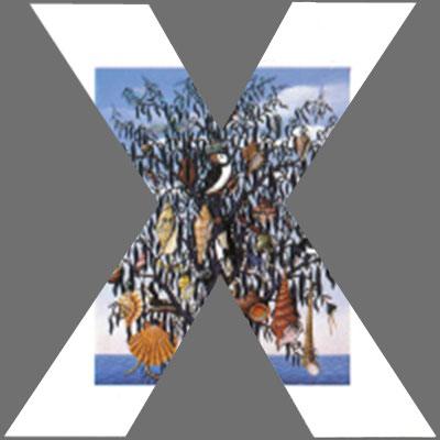 CoverX2050