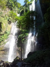 Mooie natuur op Bali