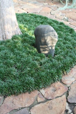 Gorgeous Front Yard Courtyard Landscaping Ideas 05