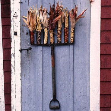 Stylish Fall Wreaths Ideas With Corn And Corn Husk For Door 26
