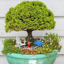 Creative Bonsai Trees Gardening Ideas For Backyard 50