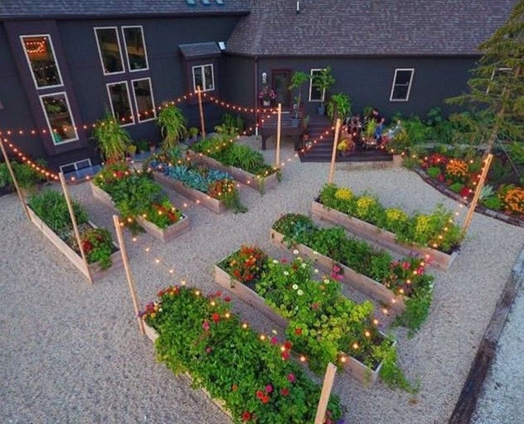 Best Ideas To Growing Vegetable Garden 38