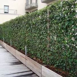 Charming Privacy Fence Ideas For Gardens 36
