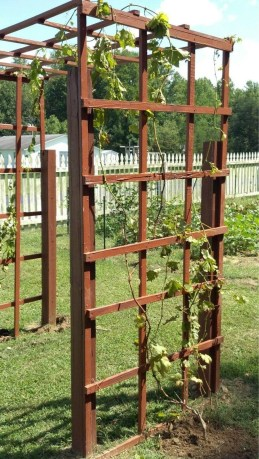 Cool Garden Fence Decoration Ideas To Try This Year 24