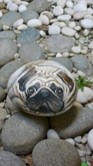 Magnificient Diy Painted Rocks Ideas With Animals Dogs For Summer 03