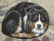 Magnificient Diy Painted Rocks Ideas With Animals Dogs For Summer 51
