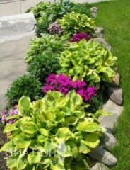 Attractive Border Garden Ideas To Your Landscaping Edging 30