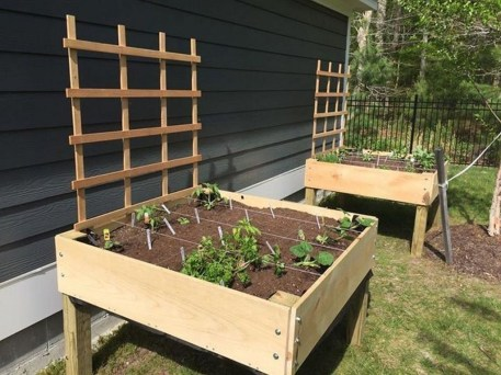 Comfy Diy Raised Garden Bed Ideas That Looks Cool 09