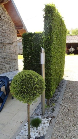 Impressive Small Front Yard Landscaping Ideas To Try 47