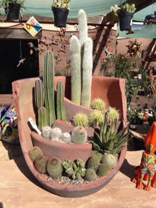 Awesome Succulent Garden Ideas In Your Backyard 07