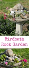 Awesome Succulent Garden Ideas In Your Backyard 10