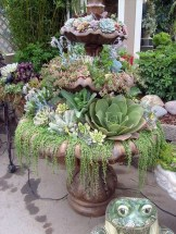 Awesome Succulent Garden Ideas In Your Backyard 17