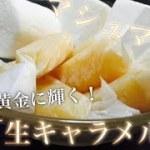 No.48【一人暮らし必見!簡単料理】 生キャラメル