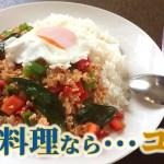 お家で簡単タイ料理…これがすごい!【ガパオライス】