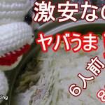 【簡単料理】安くて美味しい みぞれ鍋 大根 白菜 豚肉How to make mizore nabe