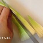 料理レシピ動画