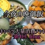 【料理動画★今夜の晩御飯#61】キャベツ大量消費チャレンジblog 第4回★キャベツとあさりのバターが美味しすぎ❗
