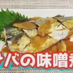 【魚料理の王道】サバの味噌煮 ~簡単に作れる~