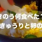 鮭ときゅうりと卵の寿司 (貧乏Ver)/ 一人暮らし料理VLOG / Japanese daily meals