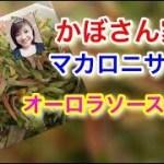 簡単サラダ♡マカロニサラダ作り方 料理動画