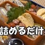 【お弁当】ミルフィーユカツ 剣先イカの煮物 切り干し大根サラダ ちくわキュウリ 卵焼き ウインナー スイートポテト【Obento】