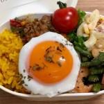 【ドライカレー】お弁当作り|目玉焼き・ターメリックライス・アスパラとエビのガーリック炒め・作り置きマカロニサラダ