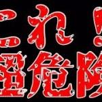 【リクエスト動画】危険⚠だが旨い?!名古屋名物!【料理動画】【おつまみ】【やみつきレシピ】