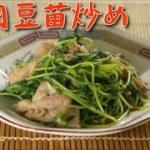 【おつまみレシピ】豚肉豆苗炒め 簡単&安い&美味しい節約料理