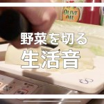 【生活音】野菜を切る/一人暮らしの料理の準備