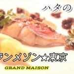 【グランメゾン★東京】ハタのロティ ノワゼットアンショワ』再現可能なアレンジレシピをプロが紹介します