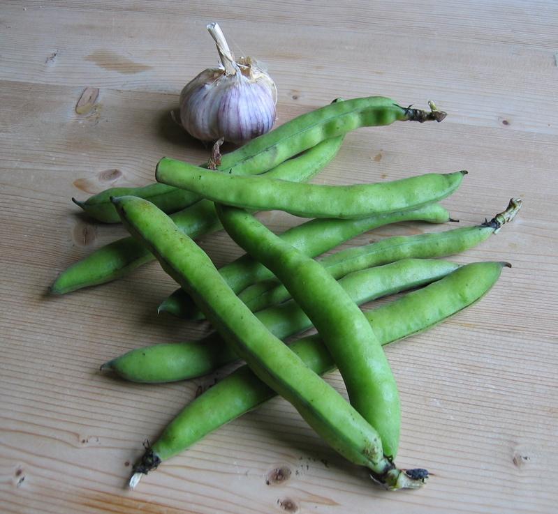 Broad beans and garlic