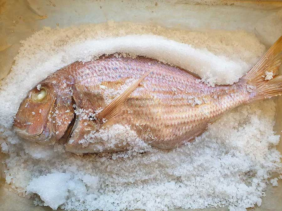 דג במלח