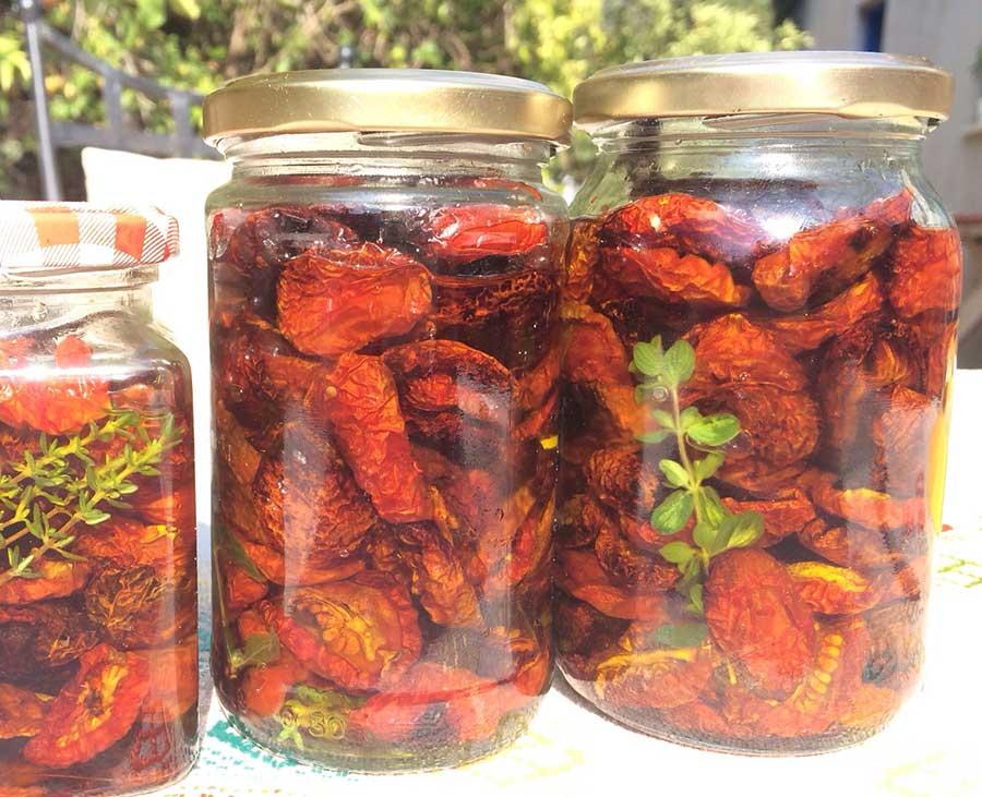 עגבניות שמש