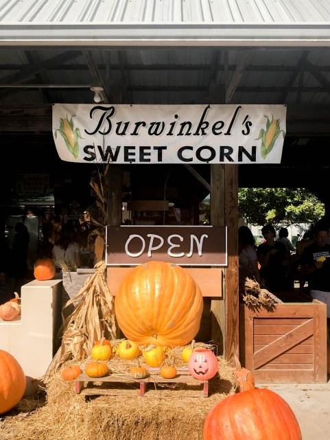 Burwinkel Farms
