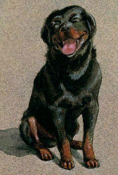 Carlthedog