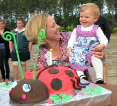 Ladybird cake - Cooker and a Looker