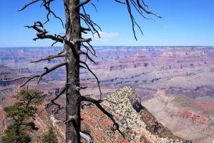 canyon 2