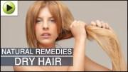 Hair Care – Dry Hair – Natural Ayurvedic Home Remedies