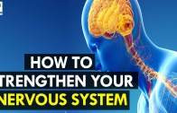 How to Strengthen Your Nervous System – Health Sutra