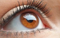 Top 15 Super Foods For Healthy Eyes