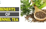 Benefits Of Fennel Tea – Health Sutra – Best Health Tips