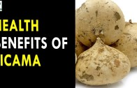 Health Benefits Of Jicama – Health Sutra – Best Health Tips