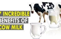7 Incredible Benefits Of Cow Milk – Health Sutra – Best Health Tips