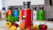 5 Best Juicers You May Buy Right Now #02