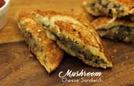 Mushroom Cheese Sandwich – Easy Sandwich Recipes