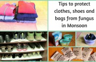 Tips to protect clothes – shoes and bags from fungus in Monsoon
