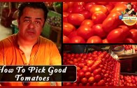 How To Pick Good Tomatoes – Fresh and Local with Vicky Ratnani